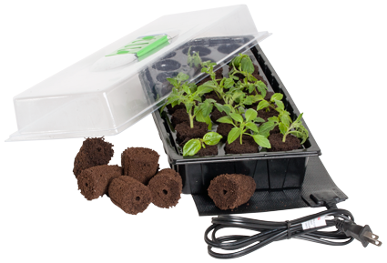 Mini Germination Station